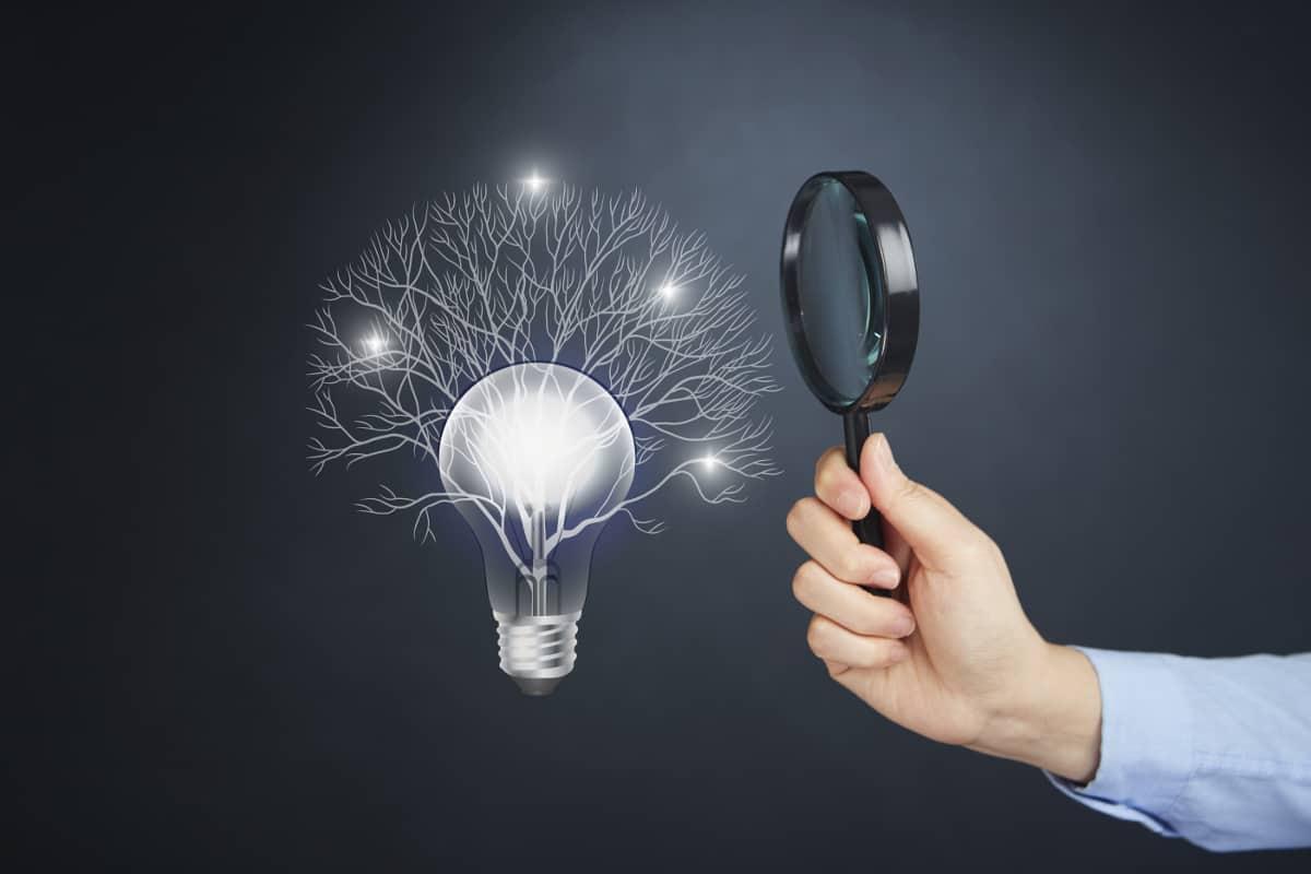 Neurotransmisores: compuestos químicos importantes que afectan el trabajo de la mente.
