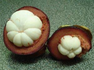 dentro de la fruta del mangostán