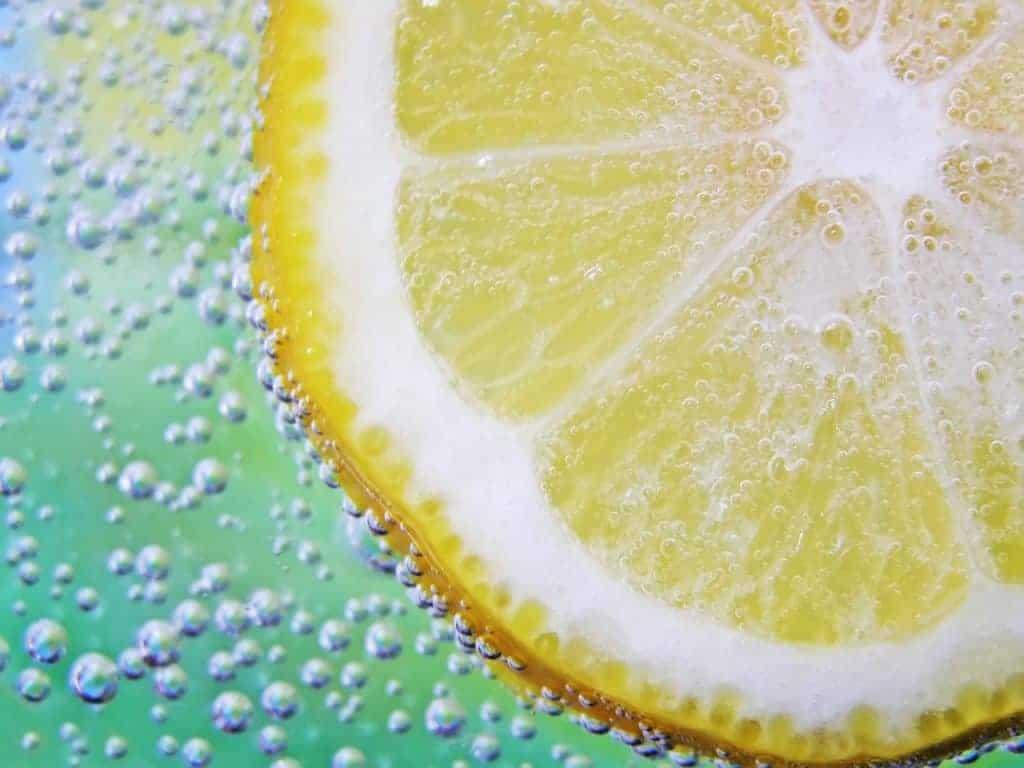 rodaja de limon